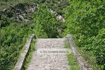 Puente Vieyu del Dobra