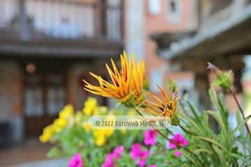 Habitación 5. Casa de aldea El Llagar