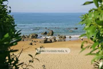 Playa el Barrigón