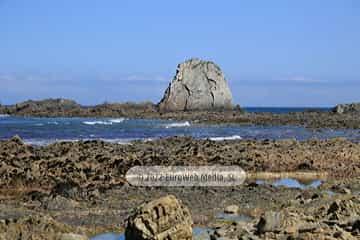 Playa de Los Campizales