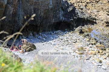 Playa de Salencia