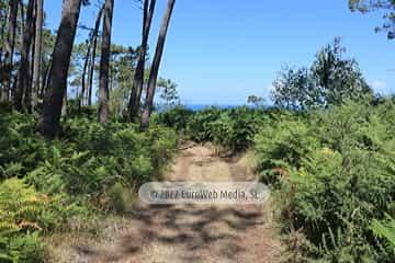 Ruta la Costa Naviega. PR AS-293. Ruta la Costa Naviega