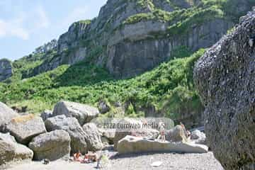 Playa de la Cagonera