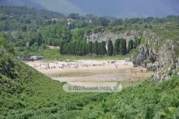 Playa Cuevas del Mar