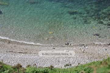 Playa Pestaña
