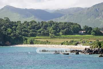 Playa de Niembro