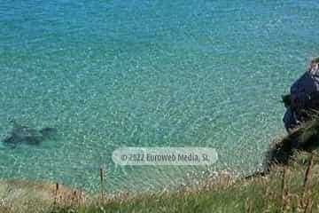 Playa La Tala - El Narantxu