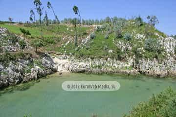 Playa Guadamía