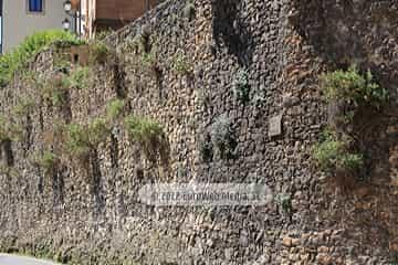 Restos de la muralla medieval