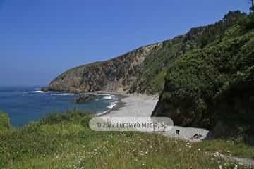 Playa del Bozo