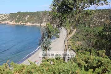 Playa de Barayo (Valdés)