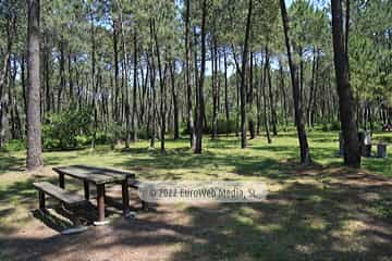 Area recreativa Monte Valsera
