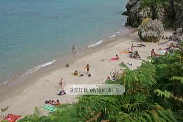 Playa de Portacos