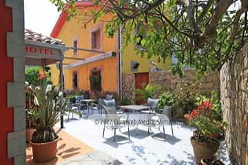 Restaurante. Hotel Las Palmeras
