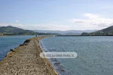 Reserva Natural Parcial de la Ría de Villaviciosa