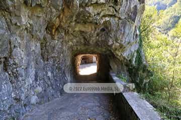 Cueva - Exposición Queso Cabrales. Cueva del Quesu (Las Arenas)
