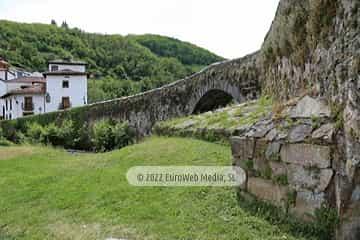 Puente romano de Cangas del Narcea