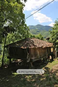 Apartamento «La Cuadra». Apartamentos rurales La Escuela