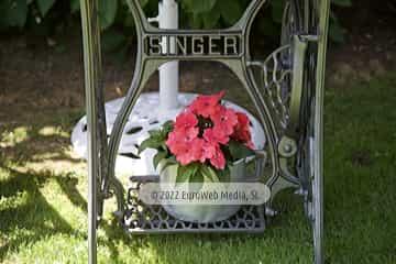 Recepción. Hotel rural El Torrejón