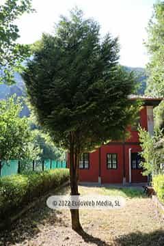 Jardín. Apartamentos rurales Dos Aguas