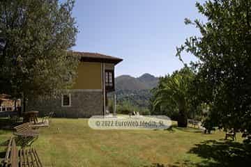 Habitación del abuelo. Casa rural La Faya