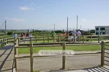 Centro de Interpretación del Medio Marino de Peñas. Centro de Recepción de Visitantes e Interpretación del Medio Marino de Peñas