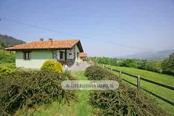 Habitación matrimonial. Casa rural El Nogal