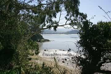 Playa Los Cobos