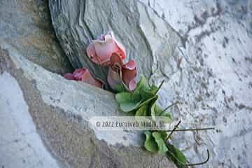 Escultura «en memoria de las personas que encontraron el reposo eterno en la Mar»