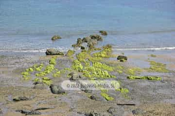 Playa de Viodo