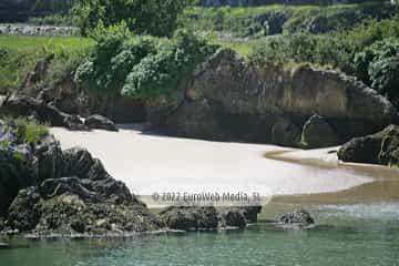 Playa de La Cóndia