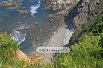 Playa del Cabo