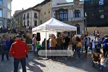 Mercado Artesano y Ecológico en Oviedo