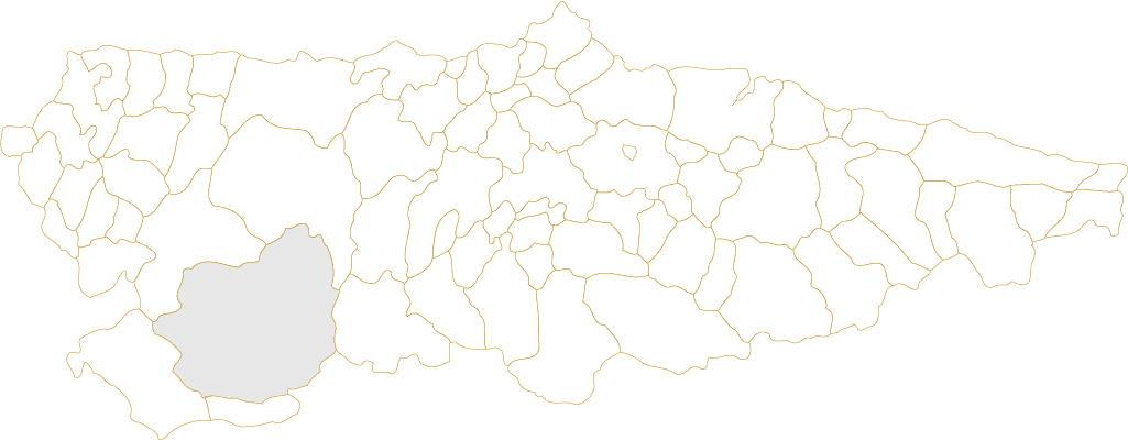 Situación de Cangas del Narcea en Asturias