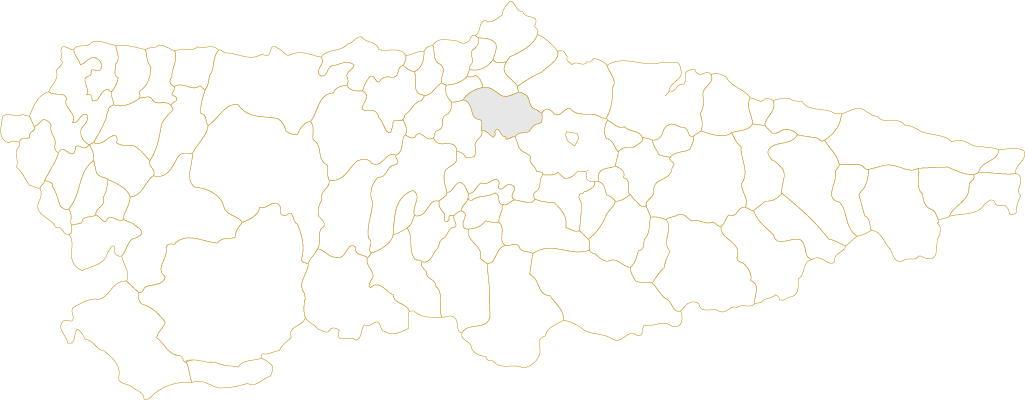 Situación de Llanera en Asturias