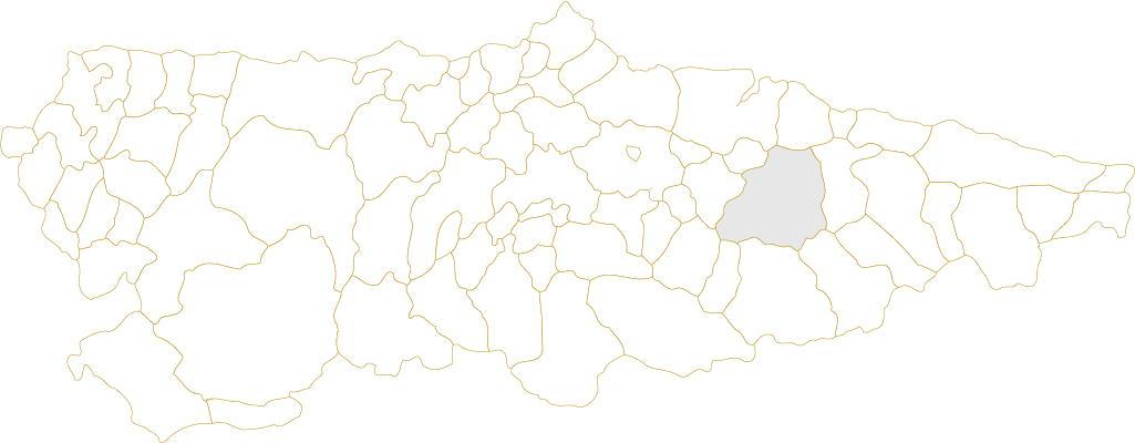 Situación de Piloña en Asturias