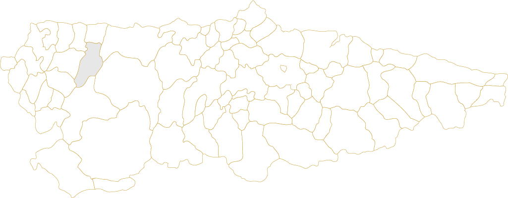 Villayón